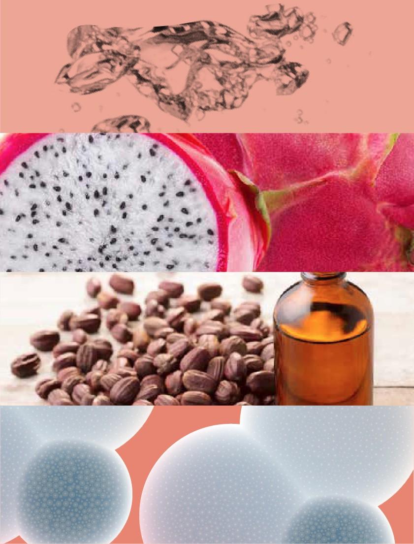 Daerma Dragon fruit mask ingredients